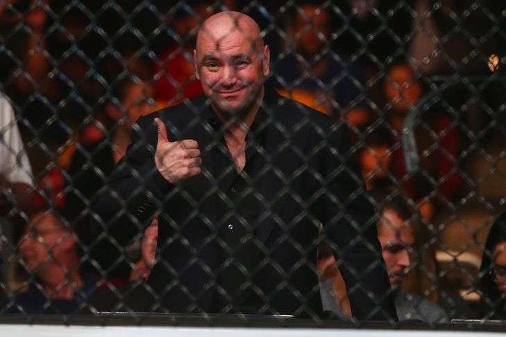Бразильская спортивная комиссия по MMA одобрила использование видео-повторов