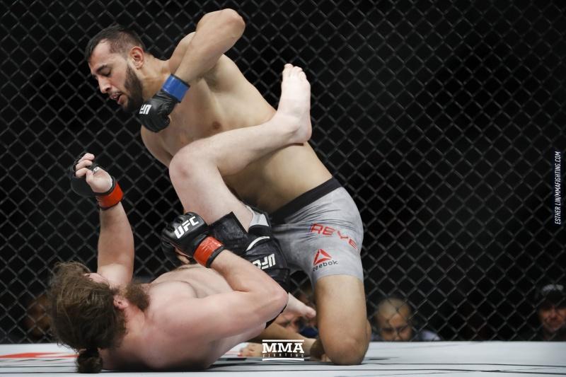 Рейес напомнит всем, какой из дивизионов UFC самый опасный