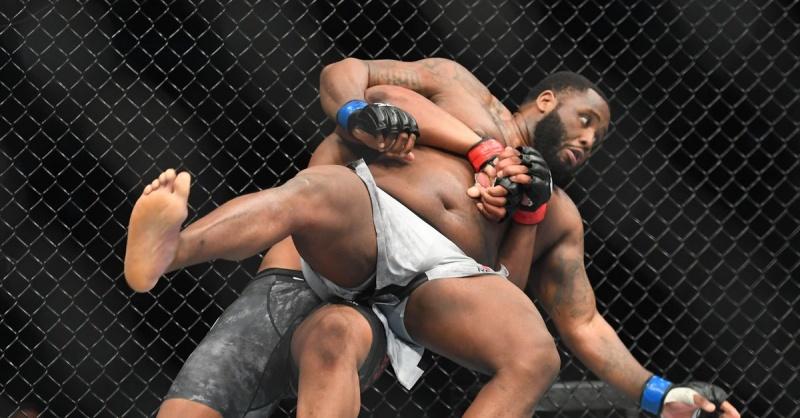 UFC FIGHT NIGHT 148 в цифрах