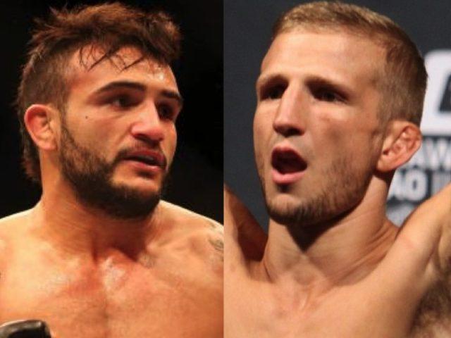 Бой Ти Джей Диллашоу – Джон Линекер в разработке на UFC 207